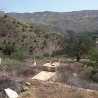 Cimetière Berbere